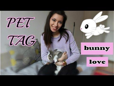 Запознайте се с Мими | PET TAG 🐰