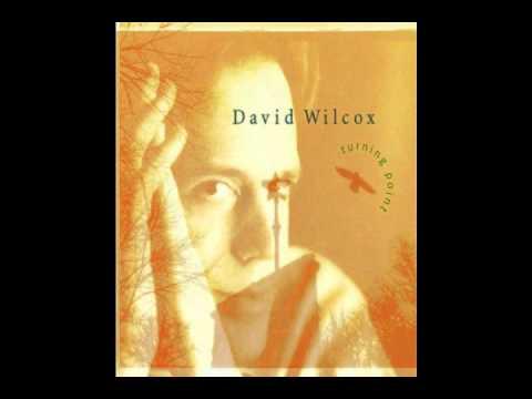 David Wilcox - Human Cannonball
