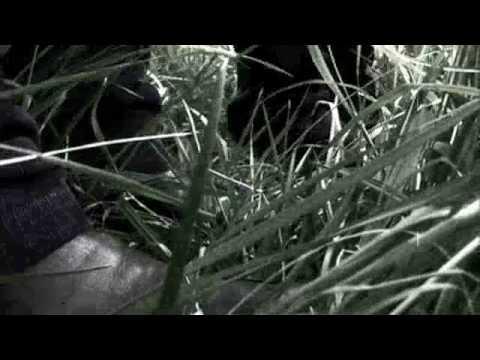 Blue Velvet - Release Trailer