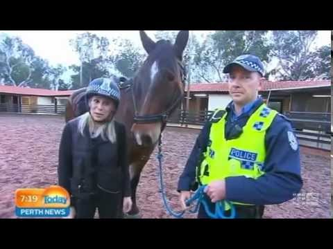 WA Police Mounted Section Part 1 | Today Perth News