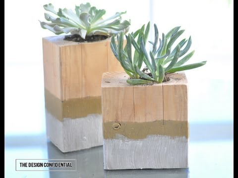 DIY Succulent Garden, DIH Workshop and a $100 Giveaway