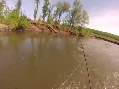 рыбалка во  башкирии получай реке белой видео летом