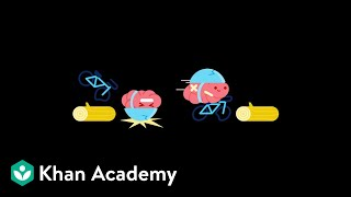 LearnStorm Growth Mindset: The Truth About Your Brain