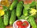 Как выращивать огурцы. Сорта и гибриды.