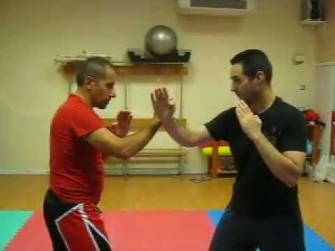 Jeet Kune Do concepts Image 1
