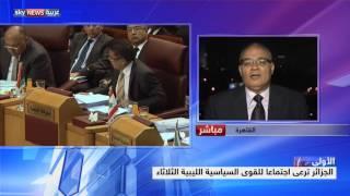 توافق مصري جزائري حول الأزمة الليبية