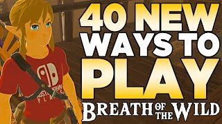 40 NEW Ways to Play The Legend of Zelda: Breath of the Wild | Austin John Plays