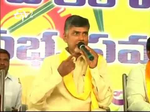 Andhra And Telangana Will Be Developed By TDP Only, Says Chandrababu