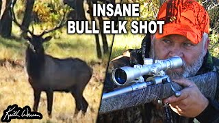 INSANE Spot n Stalk BULL ELK SHOT!