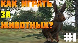 #1 GTA 5 PC - Как Играть За Животных? (Лофофоры)