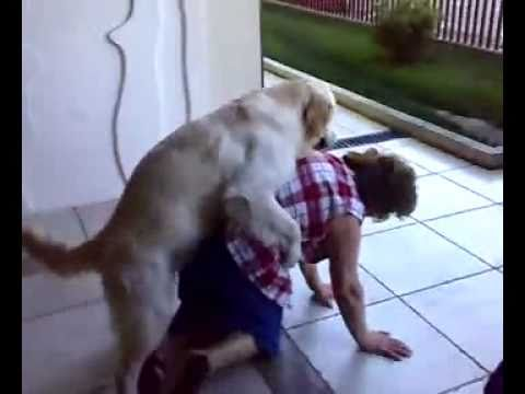 Sexo-animal-cachorro Tarado video