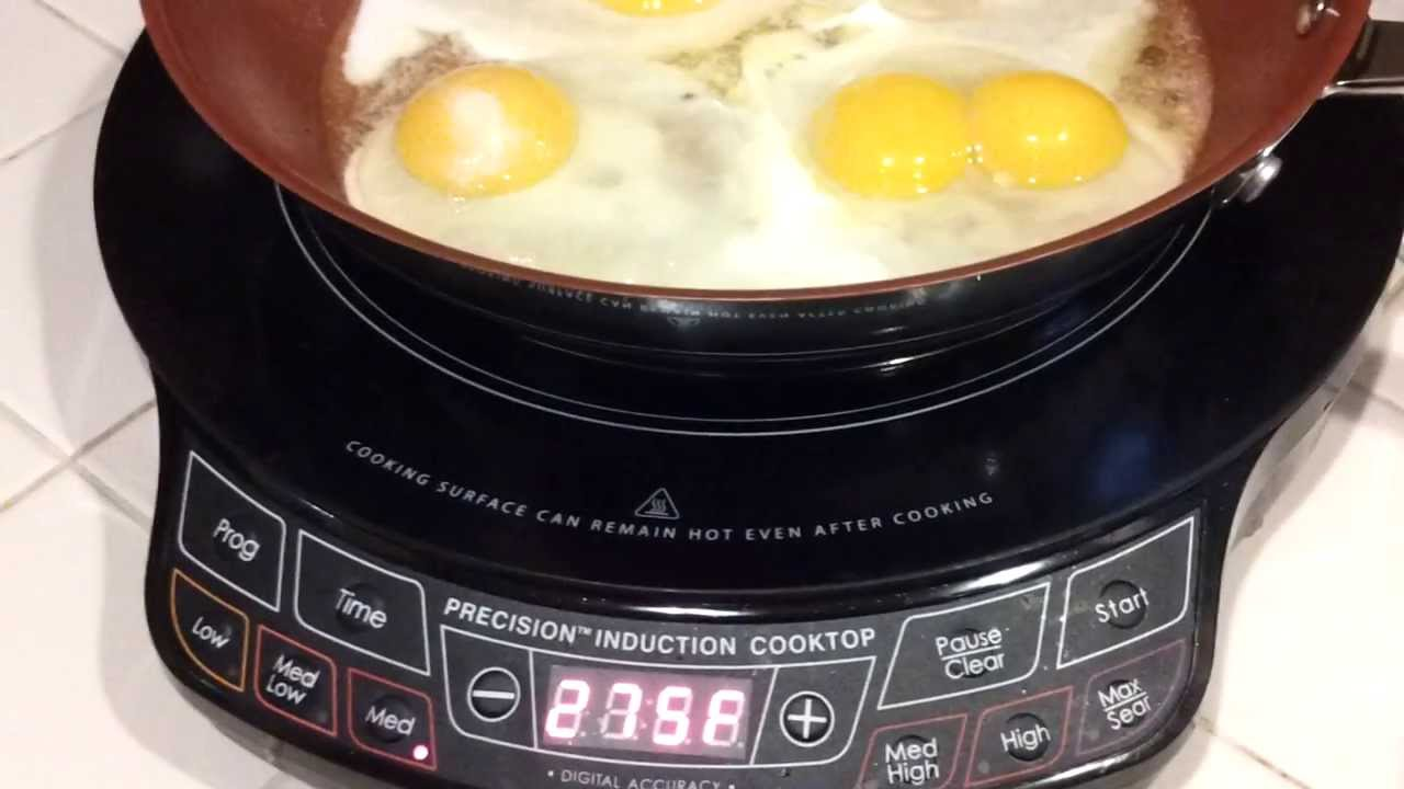 Nuwave Pic Precision Induction Cooktop Seen On Tv | Raws Food Recipes