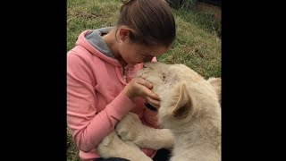 Setting Elsa the Lion Free - the last hug