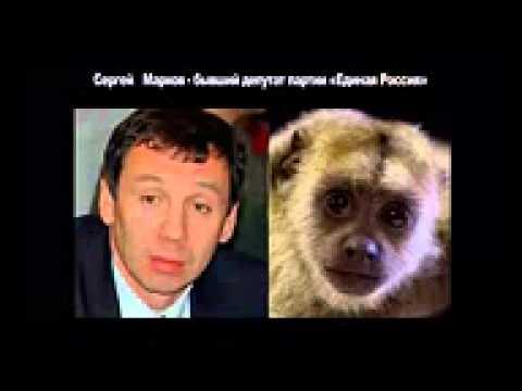 Юмор  Забавные сходства  Политики России  Прикольные фото  Смешное видео