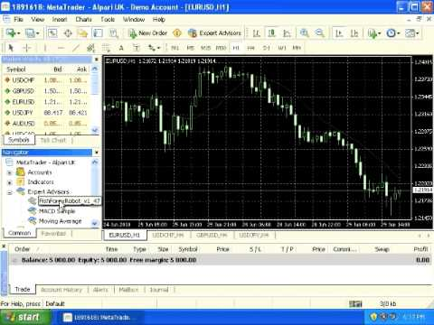 Fish forex robot free download