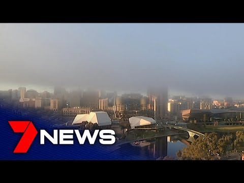 Rare September fog event sparks airport and road chaos | Adelaide | 7NEWS