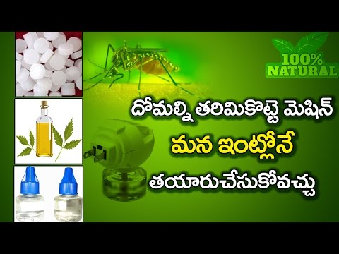 How To Kill Mosquitos Home remedy Lowcost 100%    Amazing Natural Mosquito Repellent