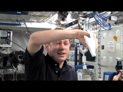 Life In Space: Science Is Fun Onboard ISS