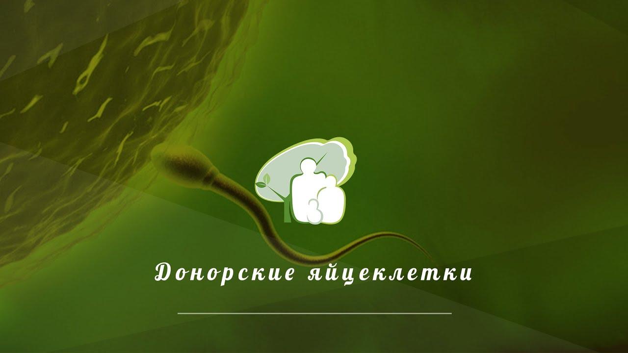 donor-spermi-tolyatti