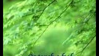 Watch Gary Valenciano I Believe video