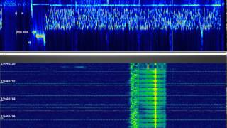 (prob) Russian Gov/Intel digimode experiments (yet another waveform)..