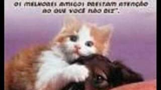 te amare-nigga - Visita WWW.ENTONADOS.COM