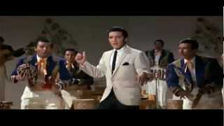 Watch Elvis Presley Bossa Nova Baby video