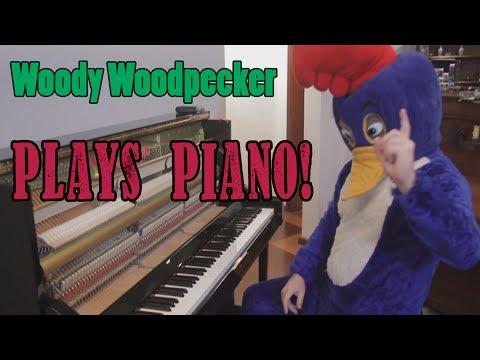 Woody Woodpecker Theme Song on Piano Vídeos de zueiras e brincadeiras: zuera, video clips, brincadeiras, pegadinhas, lançamentos, vídeos, sustos