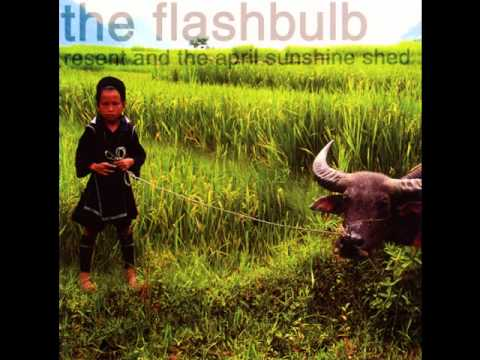 The Flashbulb - The April Sunshine Shed