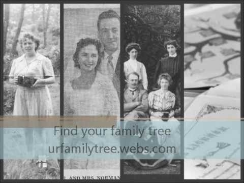 Find your family tree today!