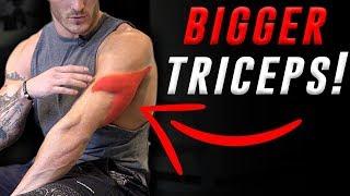 4 Exercises for Bigger Triceps (DUMBBELLS ONLY!)