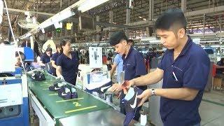 Tin Tức 24h: Cơ hội lớn cho ngành da giày trong năm Mậu Tuất