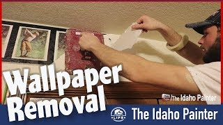 Removing Wallpaper FAST & Painting Over Wallpaper