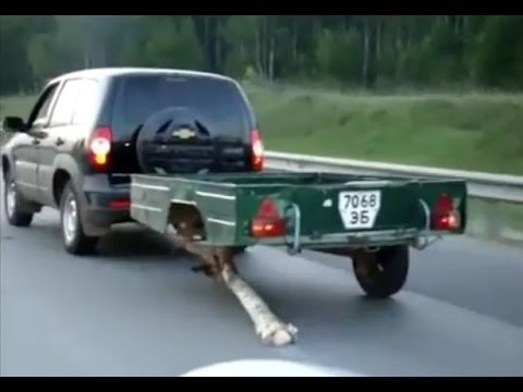 Funny road accidents,Funny Videos, Funny People, Funny Clips, Epic Funny Videos Part 11