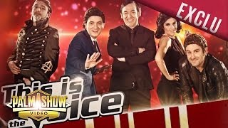 This is The Voice - Palmashow