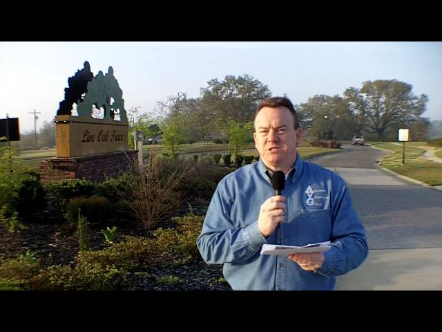 Baton Rouge Real Estate Buzz: Zachary La Real Estate Live Oak Trace March 2010 Report