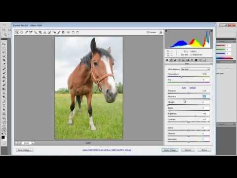 Photoshop - Jak Naprawić Prześwietlone Zdjęcie?