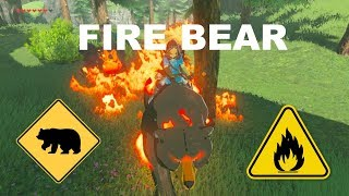 Setting the woods on fire using a fire bear in Breath of the Wild