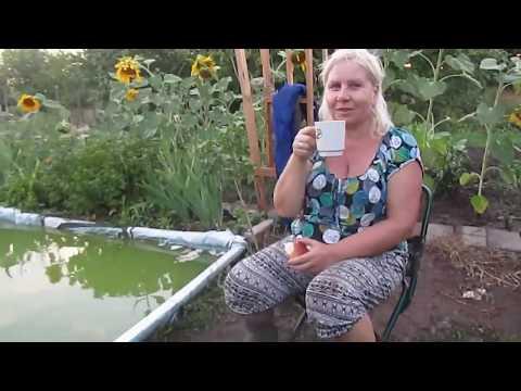 Garten Jahresrückblick Teil 2 des Sommers Садовый год в обзоре, часть 2 лета