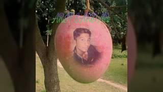 Bangla gojol silky Muzaffar