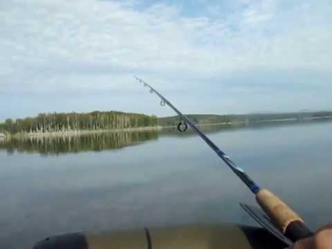 чистое южное видео рыбалка