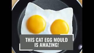 Cat Egg Mould www.thepriceworth.com
