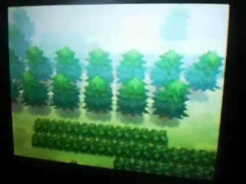 falha grafica pokemon black e white 2
