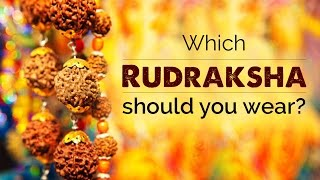 Which Rudraksha should you wear
