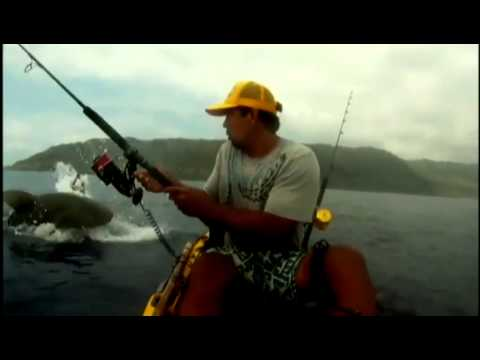Kayak fisherman has close encounter with shark