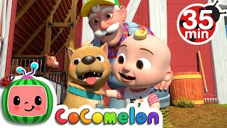 Bingo (Farm Version) + More Nursery Rhymes & Kids Songs - CoComelon