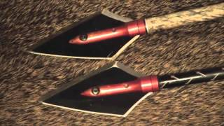The Best Broadhead Arrow for a 50lb Bow!