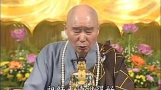 Kinh Vô Lượng Thọ, tập 161 - Pháp Sư Tịnh Không (1998)