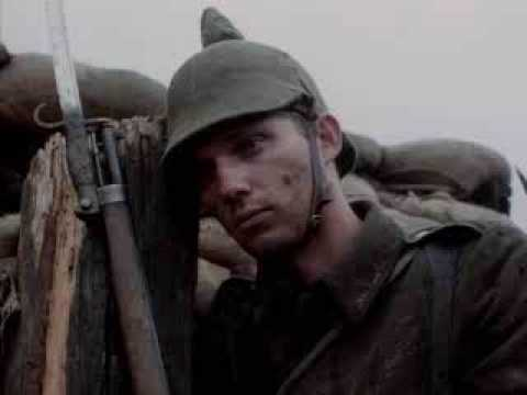 Life in the trenches essay