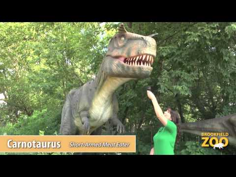 Would You Rather? Episode 3: Triceratops vs. Carnotaurus